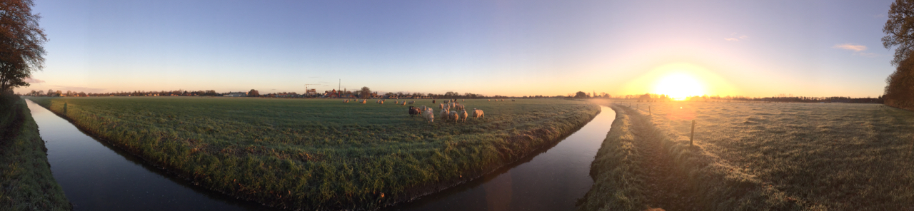 Modderbeek