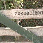 Zorgcamping